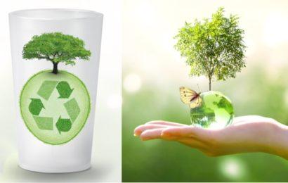 Gobelet réutilisable : une solution écologique qui va dans le bon sens